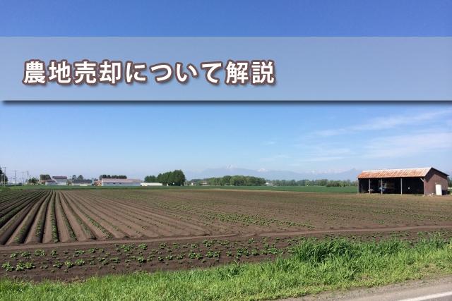 農地売却について解説イメージ